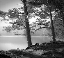 Loch an Eilein by Dorit Fuhg