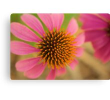 Would you like a Cone Too Canvas Print