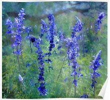 le jardin bleu Poster
