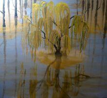 Serene Oasis by FallonFranzen