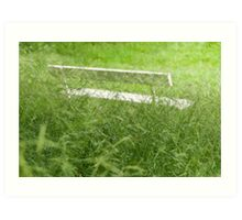 Bench in City Park Obscured by Grass Art Print