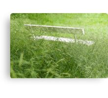 Bench in City Park Obscured by Grass Metal Print