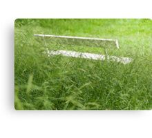 Bench in City Park Obscured by Grass Canvas Print