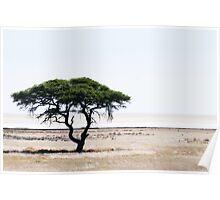 Deserted Tree Poster