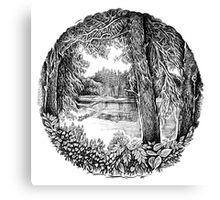 Trees near the river Canvas Print