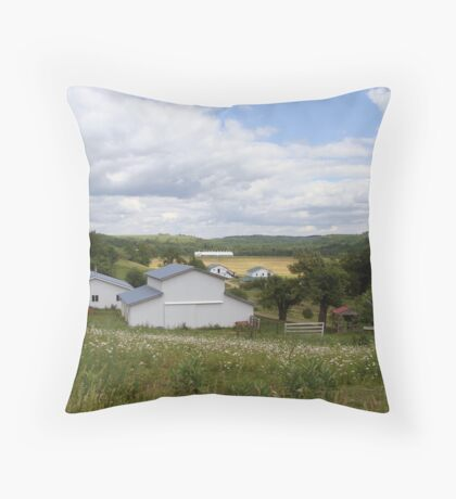 An Amish Community Throw Pillow