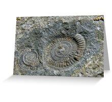 Rock Of Ages ~ Lyme Regis Greeting Card