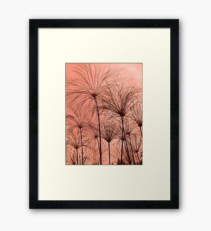Plant Silhouettes  Framed Print