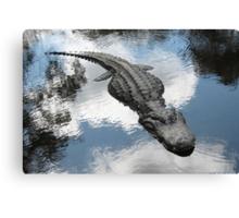 Gator in Homosassa, FL Canvas Print