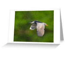 Going..going... Gone  Greeting Card