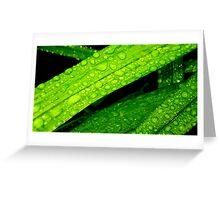 Green Droplets............. Greeting Card