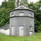The Ink Bottle House,Piltown,Co.Kilkenny,Ireland. by Pat Duggan