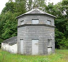 The Ink Bottle House,Piltown,Co.Kilkenny,Ireland. by Pat Duggan