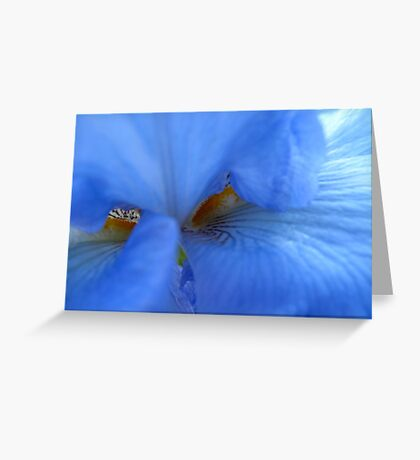 Blue brush off Greeting Card