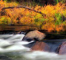 Merced River Autumn by Floyd Hopper