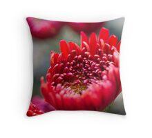 chrysanthemum in the garden Throw Pillow