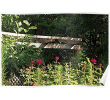 Morning in the Garden Poster