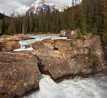 Natural Bridge, Kicking Horse River by Alex Preiss