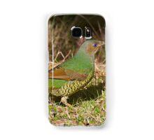 Female Satin Bower Bird Samsung Galaxy Case/Skin