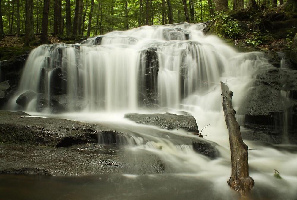 Tucker Brook Falls by Diana Nault