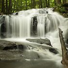 Tucker Brook Falls by Diana Nault