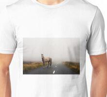 Sallygap horse Unisex T-Shirt