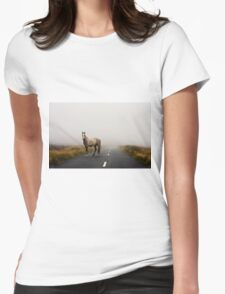 Sallygap horse Womens Fitted T-Shirt