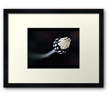 Touch... Framed Print