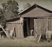 The Junk Shed by Elaine Teague