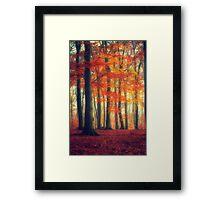 Dreamy Fall Reds Framed Print