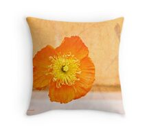 Dwell In The Heart Throw Pillow