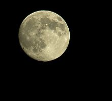 Moon No.1 by Paul Berry