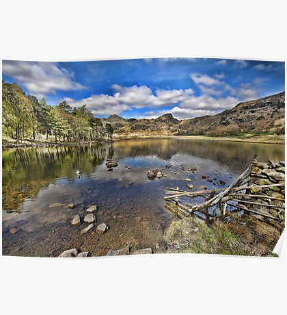 Blea Tarn and Langdale Pikes Poster
