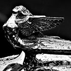 Hood Ornament - 1932 Plymouth - B&W by PhotosByHealy