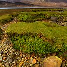 Loch Slapin (2) by Karl Williams