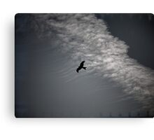 Of Kites and Chemtrails II Canvas Print