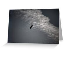 Of Kites and Chemtrails II Greeting Card