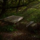 Little table in wood. by VallaV