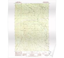 USGS Topo Map Oregon Beaver Butte 278969 1985 24000 Poster