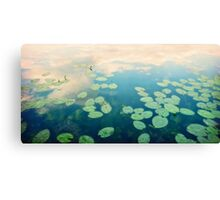 waterlilies home Canvas Print
