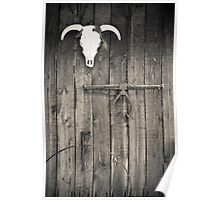 Taos Bull Skull Poster