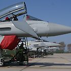 Typhoons is a row. by CarolineLN