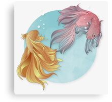 Siamese fighting fishes Canvas Print