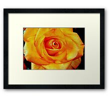 Natural Beauty © Framed Print