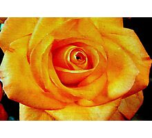 Natural Beauty © Photographic Print