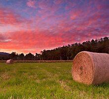 Haystacks, Marysville Buxton Rd by Vicki Moritz