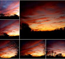 Blessed with Gorgeous Sunsets by Debbie Robbins