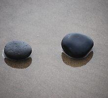 Zen by Randall Robinson