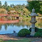 Japanese Garden, Dubbo, NSW by clearviewstock