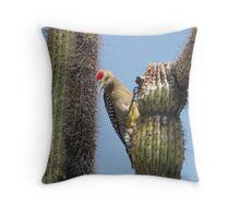 Gila Woodpecker ~ Male Throw Pillow